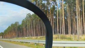 Вождение автомобиля на высокой скорости, взгляд ландшафта обочины от сиденья пассажира сток-видео