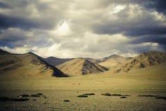 возбуждая Гималаи Стоковые Фото