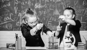 Возбужденная школьная форма девушек доказывающ их гипотезу Студенты спортзала с глубоким исследованием естественных наук стоковое фото