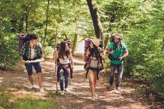 4 возбужденных туриста идут в лес, говорить и наслаждаться осени, нося удобные обмундирования для пешего туризма, тапки, шляпы, стоковые фото