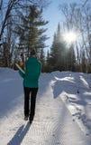 Возглавленный к нордическому следу лыжи стоковые изображения