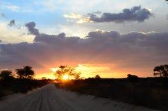 Возглавляющ назад к лагерю в Nossob, национальный парк Kgalagadi Transfrontier, Южная Африка Стоковая Фотография RF