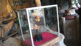 Возглавьте под стеклом в индейцах и Shuar Guarani хаты индигенных акции видеоматериалы