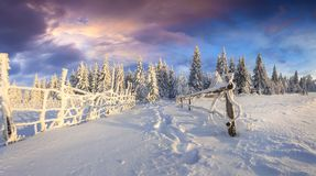 Возгонянный восход солнца зимы в прикарпатских горах при покрытый снег Стоковые Изображения