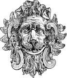 Возглавьте льва Стоковая Фотография