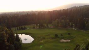 Воздушная готовя съемка устроенного удобно поля для гольфа в вечнозеленом лесе с игроками в гольф играя на проходах и зеленых цве сток-видео