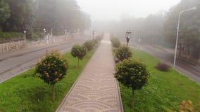 Воздушная перспектива идти на путь в парке с туманом сток-видео