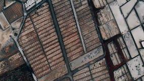 Воздушная промышленная картина, поле продукции соли сток-видео