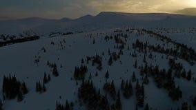 Воздушная стрельба на покрытой снег горе Dragobrat с coniferous лесом и подъемом лыжи акции видеоматериалы