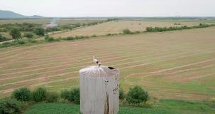 Воздушная съемка: Аист в гнезде на водонапорной башне в деревне видеоматериал