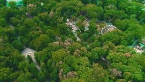 Воздушная съемка замечания катит в парк на яркий летний день 4K сток-видео