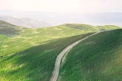 Воздушная съемка красивого зеленого поля с узкой дорогой в середине стоковое фото rf