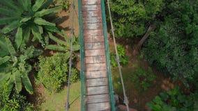Воздушная съемка мальчика бежать на мосте suspention над джунглями Перемещение к концепции Юго-Восточной Азии сток-видео