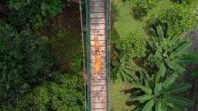 Воздушная съемка молодой женщины и ее маленького сына кладя на висячий мост над джунглями Перемещение к юговосток сток-видео