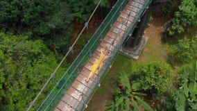 Воздушная съемка молодой женщины кладет на висячий мост над джунглями Перемещение к концепции Юго-Восточной Азии сток-видео