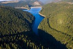 Воздушная съемка озера и леса стоковые изображения
