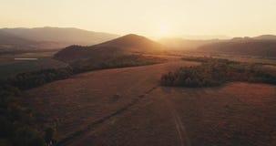 Воздушная съемка: полет над осенью тумана forrest красочной золотистый заход солнца часа сток-видео