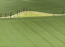 Воздушная съемка поля с прокладками трактора и аграрным путем стоковое изображение