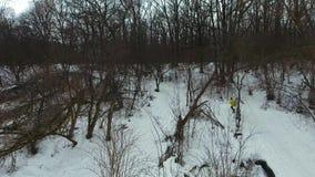 Воздушная съемка спортсмена в желтом пальто бежать вверх холм в лесе зимы сток-видео