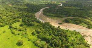 Воздушная съемка экзотического нетронутого места на экзотическом острове Глубокий лес пальмы и красивое река горы со скалистым акции видеоматериалы