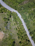 Воздушное взгляд сверху взгляд сверху дороги Стоковое Изображение RF