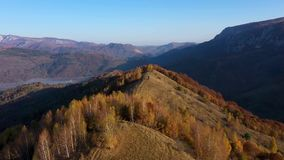 Воздушное видео трутня 4k ландшафта осени Горы и пуща видеоматериал