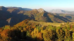 Воздушное видео трутня 4k ландшафта осени Горы и пуща сток-видео