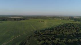Воздушное летание над Dududki размещало вокруг лесов и полей сток-видео
