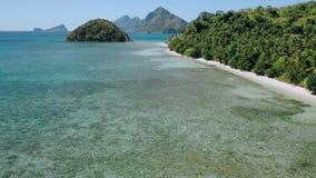 воздушное летание трутня 4k над мелкой чистой водой вдоль пляжа рая тропического с ладонями кокоса отбрасывая на океане сток-видео