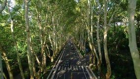 Воздушное фотографирование дороги мавзолея Сунь Ятсен видеоматериал