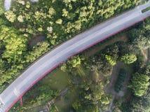 Воздушное фото дороги между деревьями Стоковые Фотографии RF