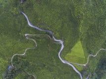 Воздушное фото - плантация чая расположенная в гористой местности Камерона, pahang, Малайзии Стоковая Фотография