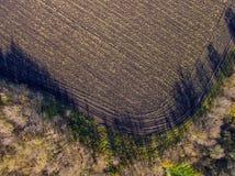 Воздушное фото поля с сжатыми урожаем, дорогой и деревьями, на день осени солнечный Стоковая Фотография
