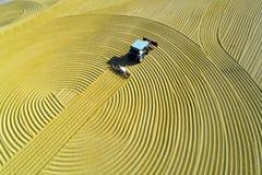 Воздушное фото сбора падиа в сельском Китае Стоковые Изображения