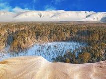 воздушное taiga Стоковое Фото
