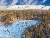 воздушное taiga Стоковые Фото