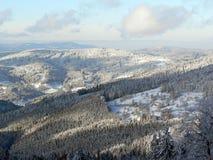 воздушный взгляд пущи зимний Стоковые Изображения RF