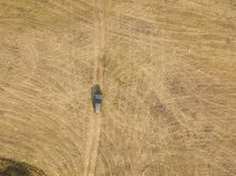Воздушный взгляд сверху автомобиля на предпосылке f текстуры поля лета стоковые фото