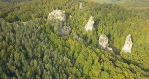 Воздушный взгляд сверху к утесам Dovbush в прикарпатских горах, Украина акции видеоматериалы