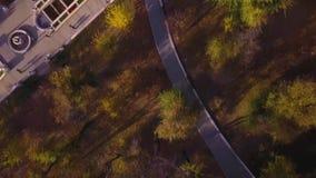 Воздушный взгляд сверху парка города с людьми идя на тротуары акции видеоматериалы