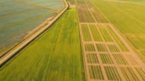 воздушный взгляд сельскохозяйствення угодье видеоматериал