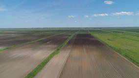 воздушный взгляд сельскохозяйствення угодье сток-видео