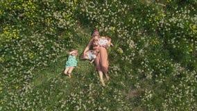 Воздушный: Молодая белокурая мать hippie имея качественное время кладя лежать с ее ребятами на поле одуванчика парка - акции видеоматериалы