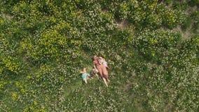 Воздушный: молодая белокурая мать hippie имея качественное время кладя лежать с ее ребятами на поле одуванчика парка - видеоматериал