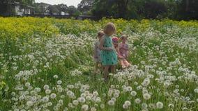 Воздушный: Молодая белокурая мать hippie имея качественное время с ее ребятами на поле одуванчика парка - носку дочерей видеоматериал