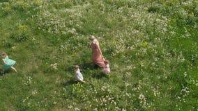 Воздушный: Молодая белокурая мать hippie имея качественный идти и ход времени с ее ребятами на поле одуванчика парка сток-видео