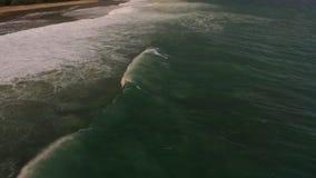 Воздушный отснятый видеоматериал замедленного движения трутня океанских волн ломая перед берегом bali Индонесия сток-видео