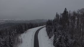 Воздушный отснятый видеоматериал леса 4k рождества снега зимы coniferous видеоматериал