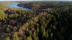 Воздушный отснятый видеоматериал трутня Лес, болото и длинное озеро акции видеоматериалы
