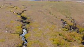 Воздушный отснятый видеоматериал 4K дороги пропуска змейки и окружающего пикового национального парка района летом 2019 акции видеоматериалы